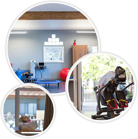 Haven Health Flagstaff Rehabilitation Physical Therapy Facility